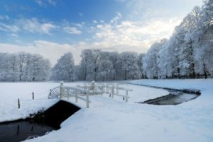 Image Source Page: http://www.123rf.com/photo_6228006_beautiful-winter-landscape-in-the-netherlands--elswout-overveen.html