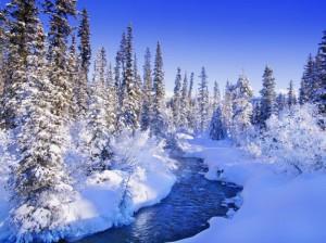 Image Source Page: http://desktopia.net/seasons/winter-seasons/winter-wonderland-desktop-wallpaper/