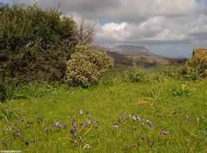 Image Source: www.west-crete.com/dailypics/crete-2009/3/12-early-spring-landscape