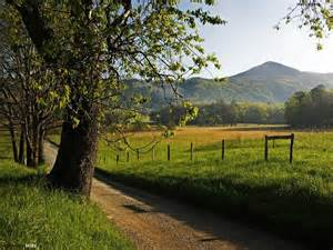 Image Source: www.wallpapersbuzz.com/spring/late-spring-landscape