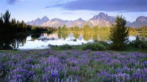 Image Source: http://wallpapers5.com/wallpaper/Teton-Range-in-Spring-Wyoming-Nature