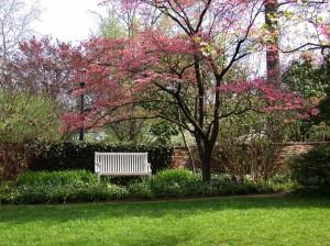 Image Source: www.hdwallpaperspics.com/spring-landscape