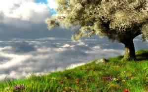 Image Source: http://hd-desktop-wallpapers.blogspot.com/2011/03/spring-landscape
