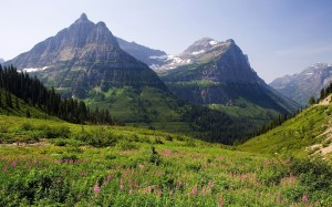 Image Source: http://globeattractions.com/mountains-meadow-forest-landscapes