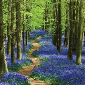 Image Source: www.phototechnique.com/landscape/spring-landscape