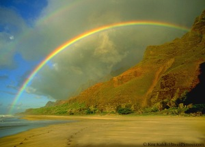 Image Source: http://howisitmade. org/how-are-rainbows-made/rainbow