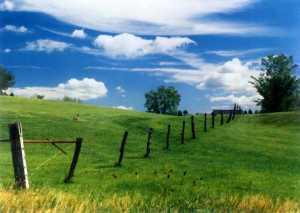 Image Source: http://fineartamerica.com/featured/summer-landscape-photograph/