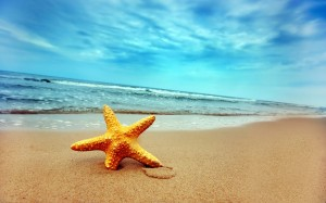 Image Source: http://wallpapersus.com/summer-at-lonely-beach-landscapes/
