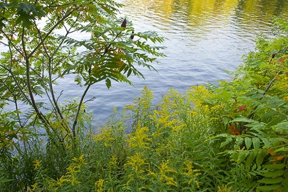 Image Source: http://mimillerphotos.com/gallery_landscapes.asp/