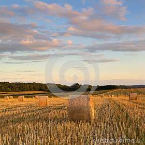 Image Source: www.dreamstime.com/stock-photos-hay-bales-summer-evening