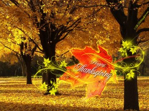 Image Source: http://felicelog.blogspot.com/2011/11/thanksgiving-photo-gallery/