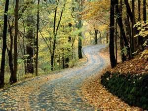 Image Source: http://coolhdwallpapers.blogspot.com/2011/07/beautiful-october-scene/