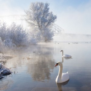 Image Source: www.123inspiration.com/breathtaking-winter-landscape