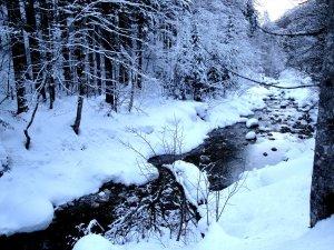 Image Source: http://derknob.deviantart.com/art/Snow-Landscape-15/