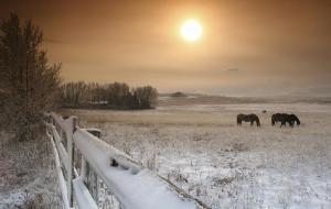 Image Source: http://david-f.jalbum.net/Pinboard/slides/Winter%20Landscape/