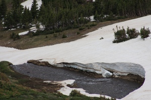 Image Source: http://earthsky.org/earth/philip-mote-on-declining-snow-melt/