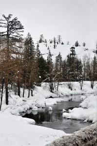 Image Source: http://blog.titus2.image.com/2010/02/01/winter-scenes/