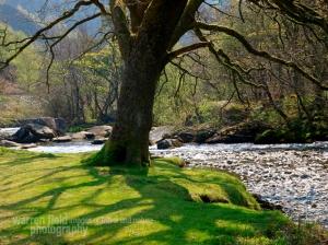 Image Source: http://warrenfield.wordpress.com/2011/05/05/welsh-landscapes-in-april/