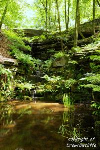 Image Source courtesy of: http://drewslandscapes.blogspot.ca/2011/06/26th-june-rivington.html