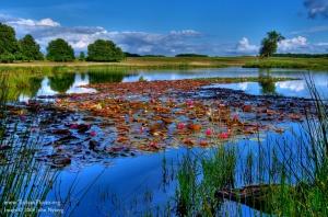Image Source: http://www.todaysphoto.org/potd/landscape-of-colors.html