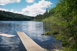Image Source: http://www.env.gov.bc.ca/omineca/esd/faw/stocking/camp/cstc2000_camp11_pan2.jpg