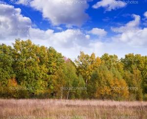 Image Source: http://static4.depositphotos.com/1000572/515/i/950/depositphotos_5151159-September-landscape.jpg