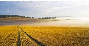 Image Source: http://colinrobertsphotography.com/images/arable-landscape-england.jpg