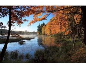 Image Source: http://www.wisconsinmade.com/assets/item/regular/5012-october-morning-on-the-cisco-chain-photograph-L.jpg