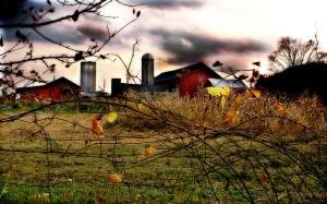Image Source: http://farm1.staticflickr.com/27/63488982_86db00dab4_z.jpg?zz=1