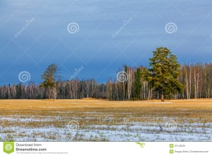Image Source: http://thumbs.dreamstime.com/z/rural-landscape-late-autumn-31142525.jpg
