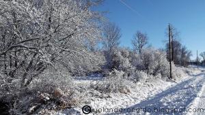 Image Source: http://1.bp.blogspot.com/-hl9Obd-U_Hc/UMZAJZqXfcI/AAAAAAAADo8/De3WCTT7_jo/s1600/Winter+Scene.jpg