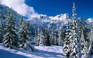 Image Source: http://www.wallpaperstop.com/wallpapers/nature-wallpapers/winter-wallpapers/winter-landscape-pictures-1440x900-0035.jpg