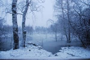 Image Source: http://1.bp.blogspot.com/_IOGSxWkMNoc/TTny54dWeNI/AAAAAAAAHL0/sP-I6jF8b1s/s1600/Frozen%2Bflood%2BTrombity.jpg