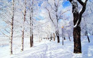Image Source: https://breathtakinglandscapes.files.wordpress.com/2013/02/breathtaking-landscapes-60-wallpaper-winter-landscape-2.jpg