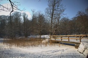 Image Source: http://1.bp.blogspot.com/-TjzB7_qvgJE/UTdBvfCCWzI/AAAAAAAADA0/vBGeCAwqB9E/s1600/february's+landscapes-6865.jpg