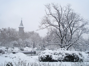 Image Source: https://romaniadacia.files.wordpress.com/2012/08/timisoara-park-winter-landscape-romania-beautiful-european-cities-beautiful-romanian-landscapes.jpg