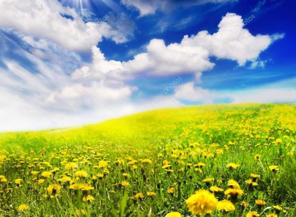 depositphotos_10687919-Spring-Landscape