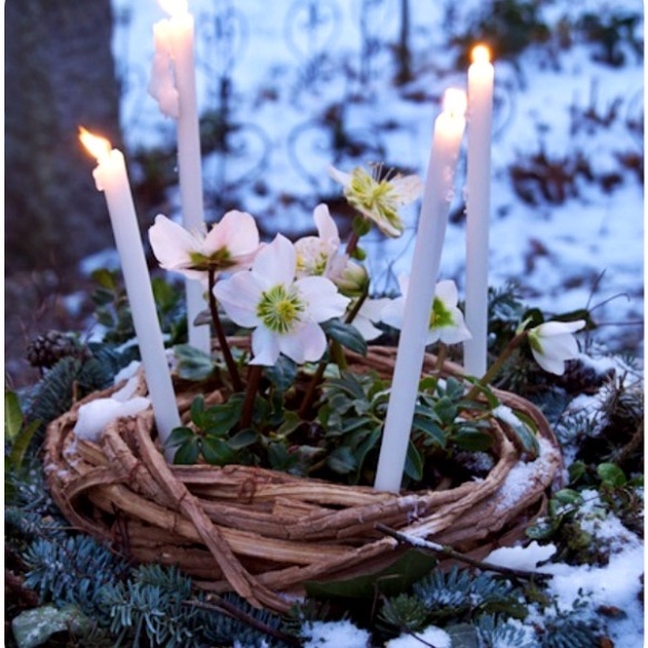 imbolc-celebration-spring-is-near-via-lawhimsy-4119
